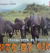 흑돼지 전문점
